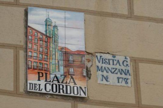 Visita General Manzana cordon